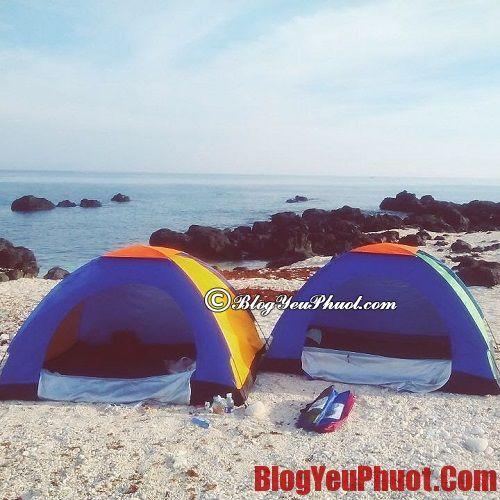 Khách sạn và nhà nghỉ tại đảo Lý Sơn