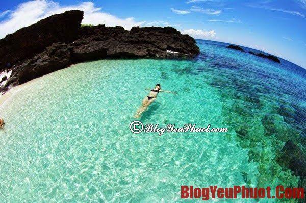 Địa điểm tham quan đẹp ở đảo Lý Sơn