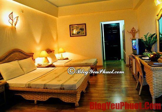 Ở đâu khi du lịch Nha Trang? Những nhà nghỉ, khách sạn đẹp, giá rẻ và chất lượng ở Nha Trang