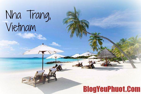 Món ngon Nha Trang, Ăn gì khi du lịch Nha Trang
