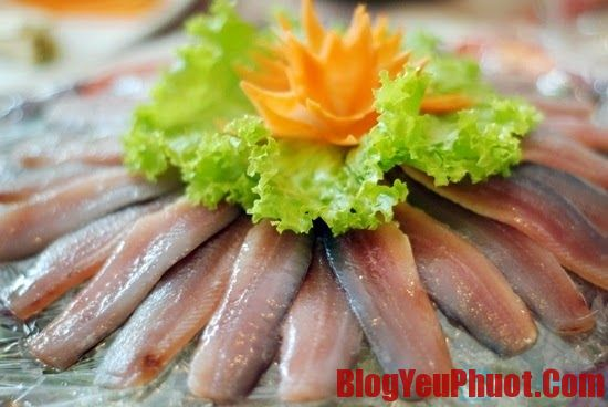Gỏi cá món ăn nổi tiếng ở Sầm Sơn. Du lịch biển Sầm Sơn nên ăn món gì?