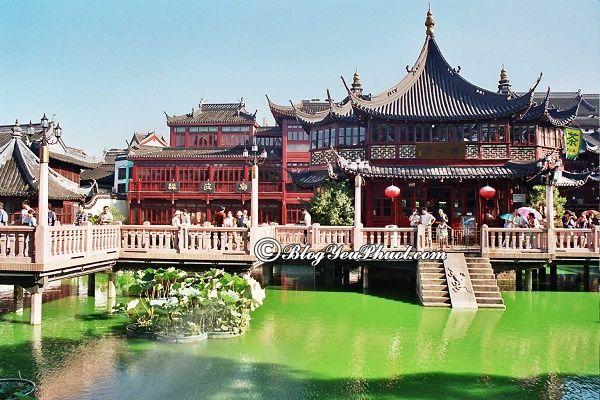 Đi du lịch Thượng Hải vào mùa thu