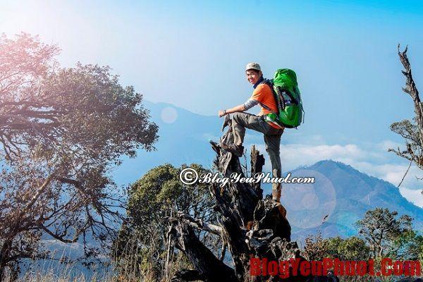 Hướng dẫn du lịch bụi xuyên Việt