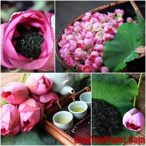 Uống trà sen ở Hà Nội ở đâu thơm ngon, đúng vị. Địa chỉ uống trà sen Hà Nội