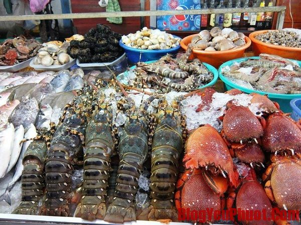 Du lịch Nha Trang ăn hải sản ở đâu ngon? Quán hải sản giá rẻ ở Nha Trang