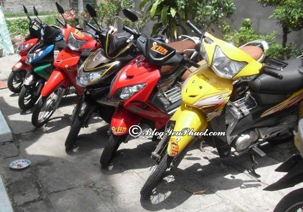 Địa chỉ và cách thuê xe máy ở Hà Giang: Kinh nghiệm thuê xe máy ở Hà Giang