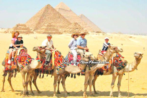Kinh nghiệm du lịch Ai Cập-thời điểm đẹp nhất du lịch Ai Cập