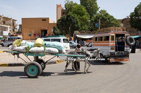 Di chuyển bằng phương tiện gì khi du lịch Ai Cập? Hướng dẫn cách đi lại khi đến Ai Cập