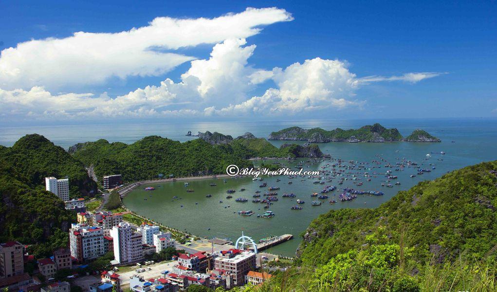 Nên đi đâu khi du lịch Hải Phòng? Du lịch Đảo Cát Bà, địa điểm tham quan, vui chơi nổi tiếng ở Hải Phòng