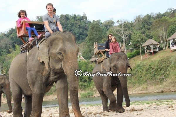 Kinh nghiệm du lịch Luang Prabang- chơi gì, ở đâu?