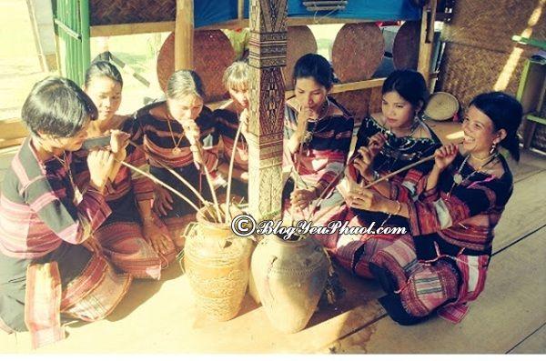 Kinh nghiệm du lịch Tây Nguyên - các đặc sản ngon, nổi tiếng ở Tây Nguyên