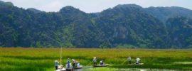 Lịch trình du lịch Vân Long- Kênh Gà