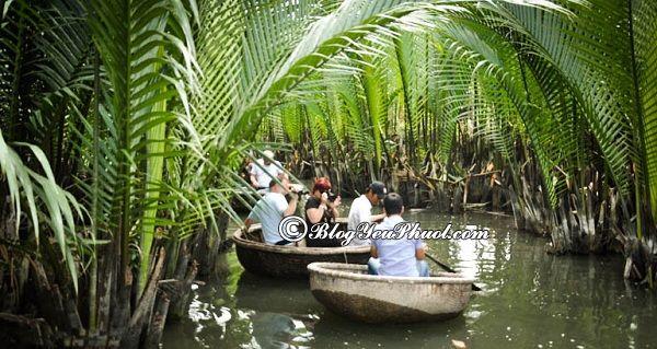Nên du lịch rừng dừa nước Cẩm Thanh vào thời điểm nào?