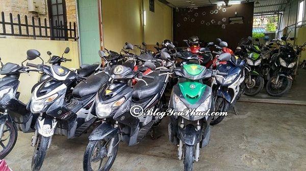 Kinh nghiệm thuê xe máy ở Huế: Du lịch Huế thuê xe máy ở đâu? Địa điểm thuê xe máy ở Huế