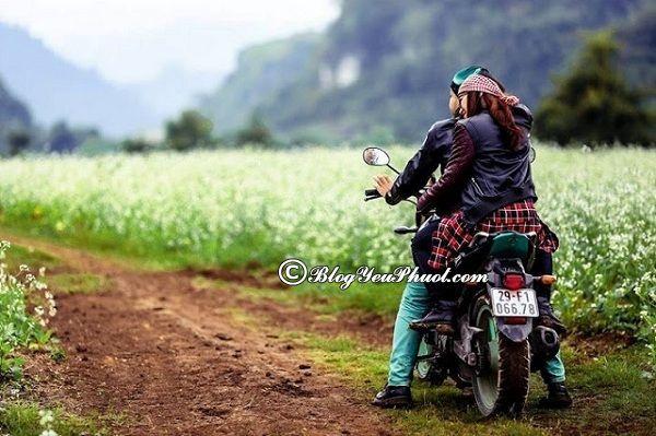 Kinh nghiệm thuê xe máy ở Sapa an toàn: Thuê xe máy ở đâu Sapa uy tín, giá rẻ?