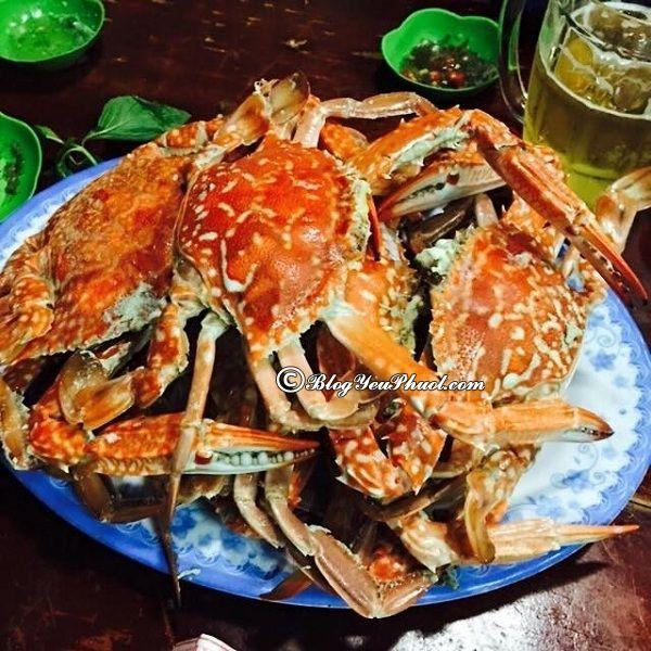 Ăn hải sản ở đâu ngon, rẻ khi du lịch Nha Trang? Địa chỉ ăn hải sản ngon, giá bình dân ở Nha Trang