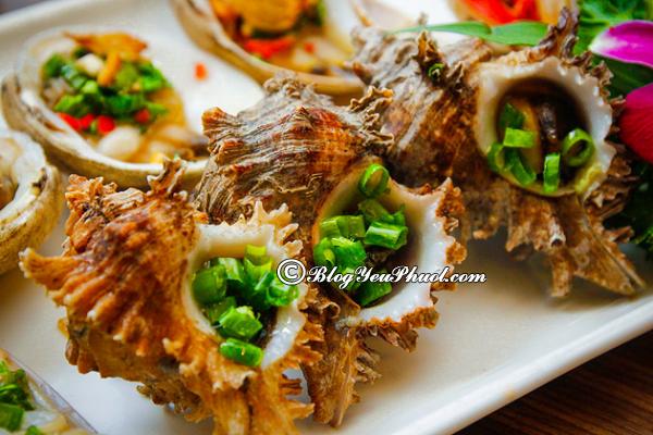 Ăn hải sản ở đâu ngon rẻ tại Nha Trang? Tổng hợp địa chỉ thưởng thức hải sản ngon khi đi du lịch Nha Trang