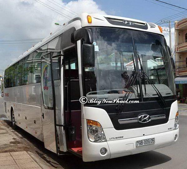 Du lịch Củ Chi bằng xe bus tiện lợi và tiết kiệm: Hướng dẫn đường đi du lịch địa đạo Củ Chi