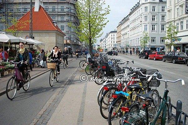 Du lịch Đan Mạch bằng xe đạp: Nên đi tham quan Đan Mạch bằng phương tiện gì?
