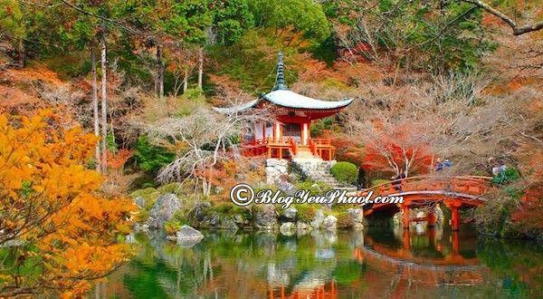Kinh nghiệm du lịch Kyoto tự túc, giá rẻ: Hướng dẫn lịch trình tham quan, khám phá Kyoto