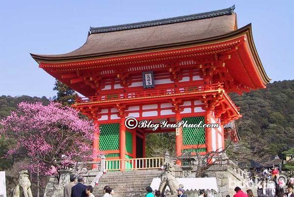 Nên đi đâu khi du lịch Kyoto? - Chùa Thanh Thủy địa điểm du lịch nổi tiếng ở Kyoto