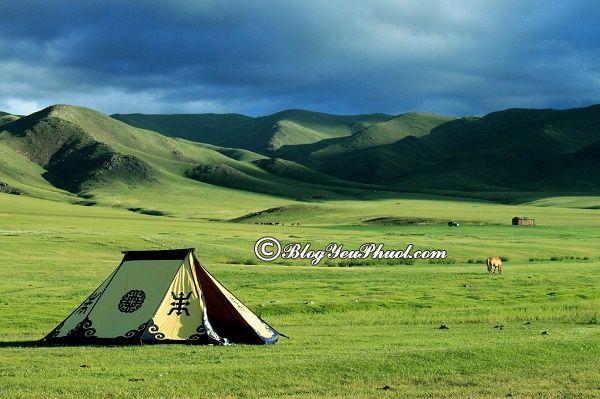Trải nghiệm ngủ trại khi du lịch Mông Cổ: Ở đâu, khách sạn nào khi đi du lịch Mông Cổ?