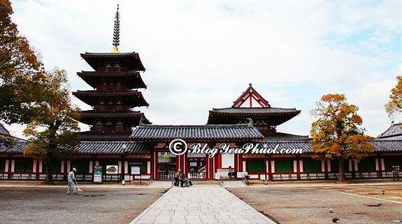 Kinh nghiệm du lịch Osaka-thời điểm đẹp nhất đi Osaka