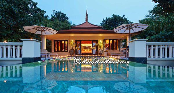 Ở đâu khi du lịch Phuket? Khách sạn cao cấp, bình dân, giá rẻ ở Phuket