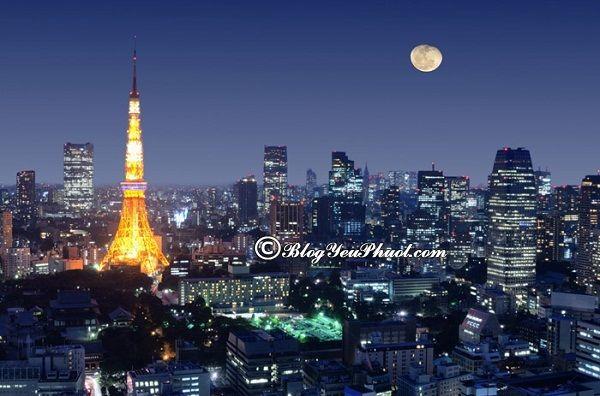 Kinh nghiệm du lịch Tokyo tư túc