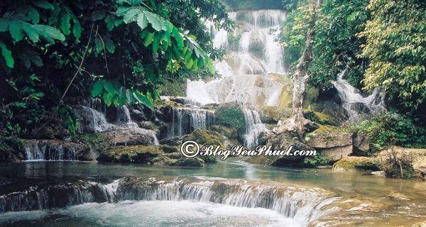 Du lịch Tuyên Quang nên đi chơi ở đâu? Địa điểm du lịch nổi tiếng ở Tuyên Quang
