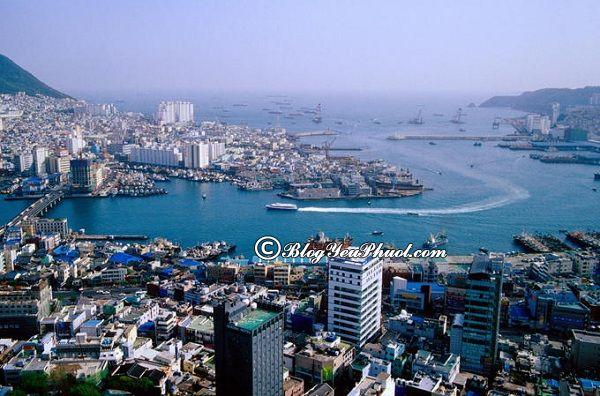 Kinh nghiệm du lịch Busan tự túc: Du lịch Busan Hàn Quốc có gì hấp dẫn?
