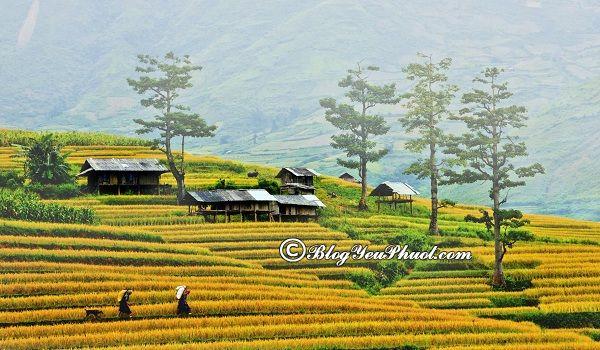 Du lịch Điện Biên nên đi đâu chơi? Địa điểm du lịch, vui chơi đẹp, nổi tiếng ở Điện Biên
