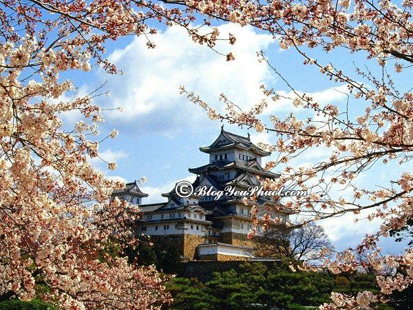 Các địa điểm tham quan ở Nhật Bản: Địa điểm vui chơi, ngắm cảnh, chụp ảnh đẹp nhất Nhật Bản