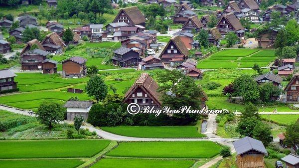 Các địa điểm tham quan ở Nhật Bản: Địa điểm du lịch nổi tiếng nhất Nhật Bản hiện nay