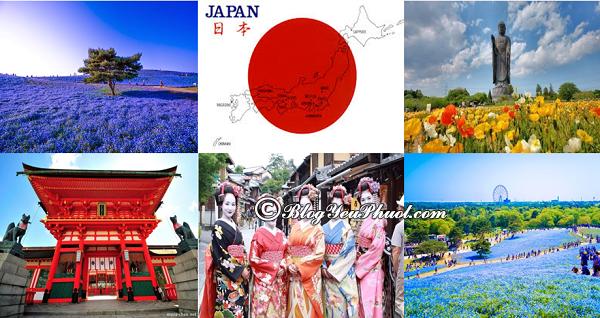 Các địa điểm tham quan ở Nhật Bản: Nhật Bản có địa điểm du lịch nào đẹp, nổi tiếng?