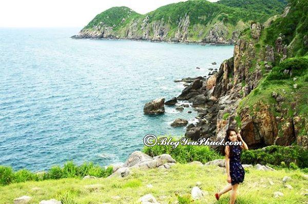 Các địa điểm tham quan tại Phú Yên