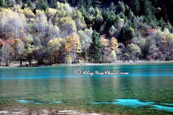 Những địa danh du lịch nổi tiếng ở Cửu Trại Câu: Địa điểm tham quan, vui chơi, ngắm cảnh, chụp ảnh đẹp ở Cửu Trại Câu