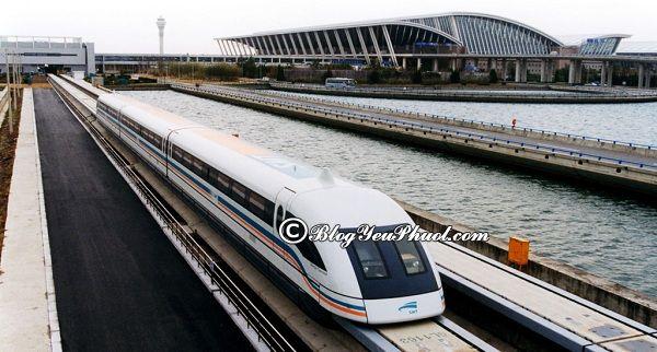 Du lịch Thượng Hải nên đi đâu chơi? Địa điểm du lịch, vui chơi thú vị, nổi tiếng ở Thượng Hải