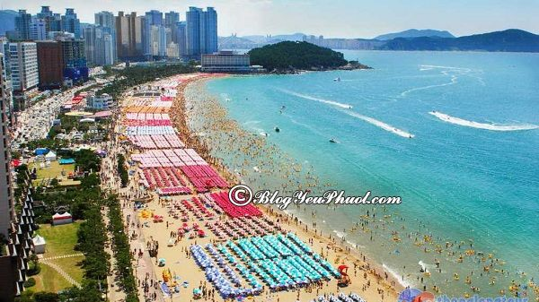 Kinh nghiệm chọn địa điểm tham quan khi du lịch Hàn Quốc: Hàn Quốc có địa điểm du lịch nào đẹp, nổi tiếng?