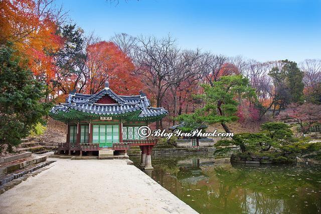 Du lịch Hàn Quốc nên đi đâu? Địa điểm tham quan, ngắm cảnh đẹp ở Hàn Quốc