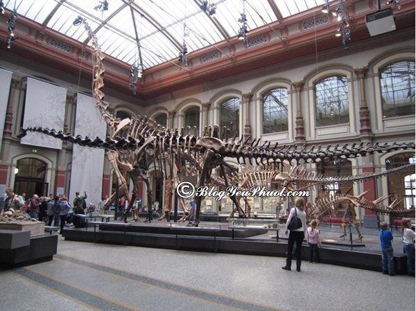 Du lịch Berlin khám phá bảo tàng lịch sử: Tư vấn lịch trình tham quan khi đi du lịch Berlin