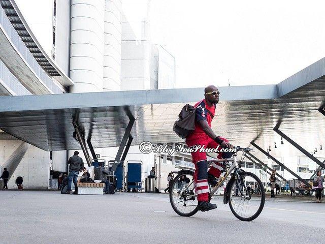 Du lịch Zurich bằng xe đạp: Hướng dẫn đi du lịch Zurich tự túc, giá rẻ