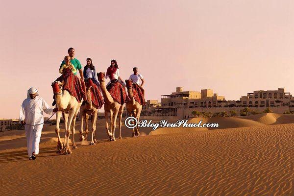 Kinh nghiệm du lịch Abu Dhabi: Hướng dẫn đi du lịch Abu Dhabi tự túc, thuận lợi