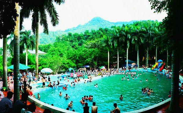 Du lịch Ao Vua nên chơi gì? Địa điểm tham quan, vui chơi, giải trí hấp dẫn ở Ao Vua