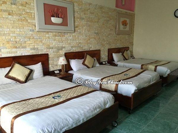 Ở đâu khi du lịch Bình Định? Khách sạn ở Bình Định đẹp, giá tốt, sạch sẽ, tiện nghi