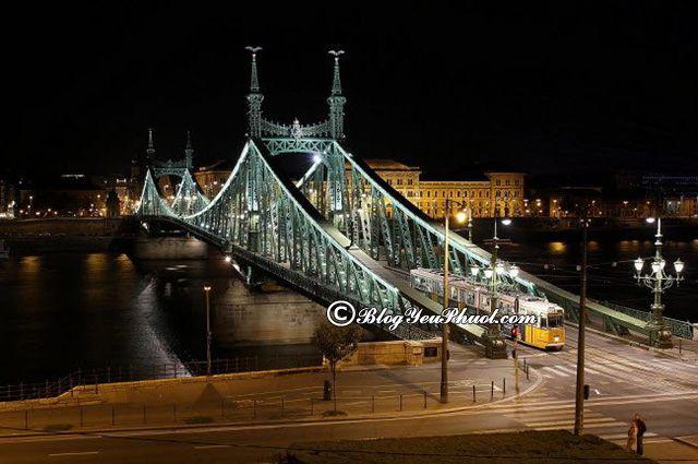 Đi đâu khi du lịch bụi Budapest- vẻ đẹp của cây cầu Liberty, tư vấn lịch trình tham quan, vui chơi khi du lịch Budapest