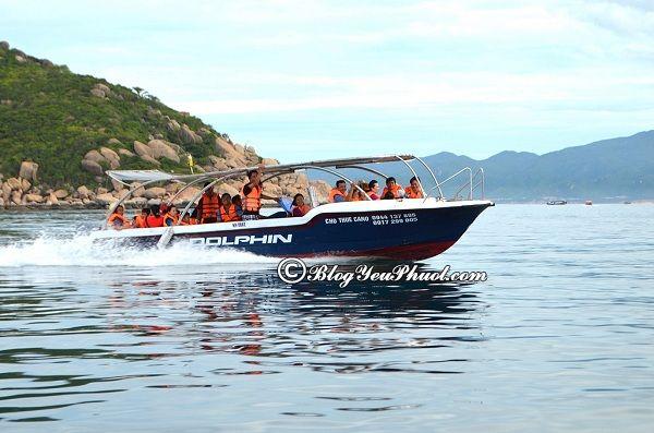 Kinh nghiệm du lịch Cù Lao Câu tự túc: Giá vé tàu đi du lịch Cù Lao Câu chi tiết