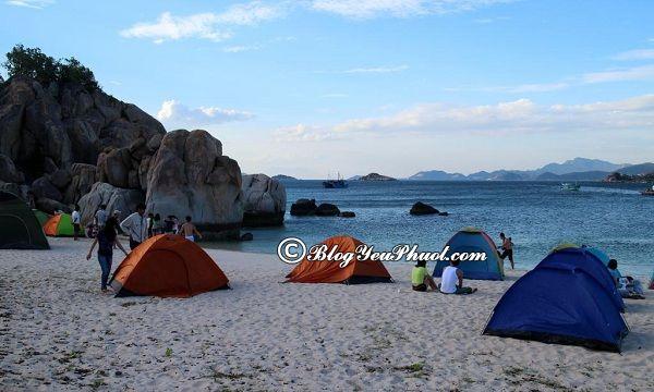 Ở đâu khi du lịch Cù Lao Câu? Nhà nghỉ, khách sạn ở đảo Cù Lao Câu