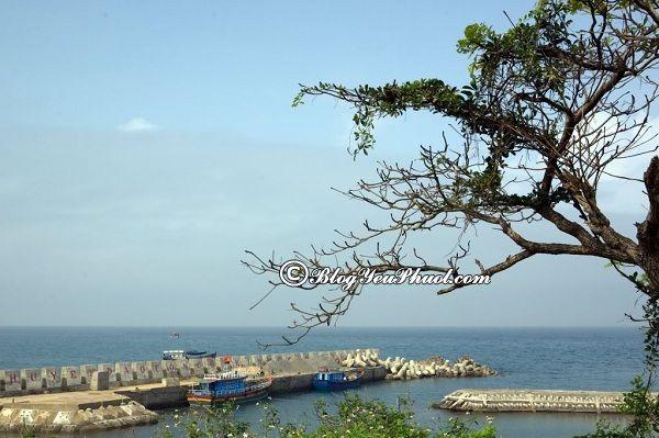 Kinh nghiệm du lịch đảo Cồn Cỏ tự túc: Du lịch đảo Cồn Cỏ như thế nào, hết bao nhiêu tiền?