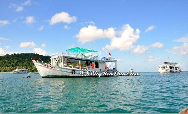 Phương tiện di chuyển để tới đảo Mắt Rồng: Giá vé tàu ra đảo Mắt Rồng bao nhiêu tiền?